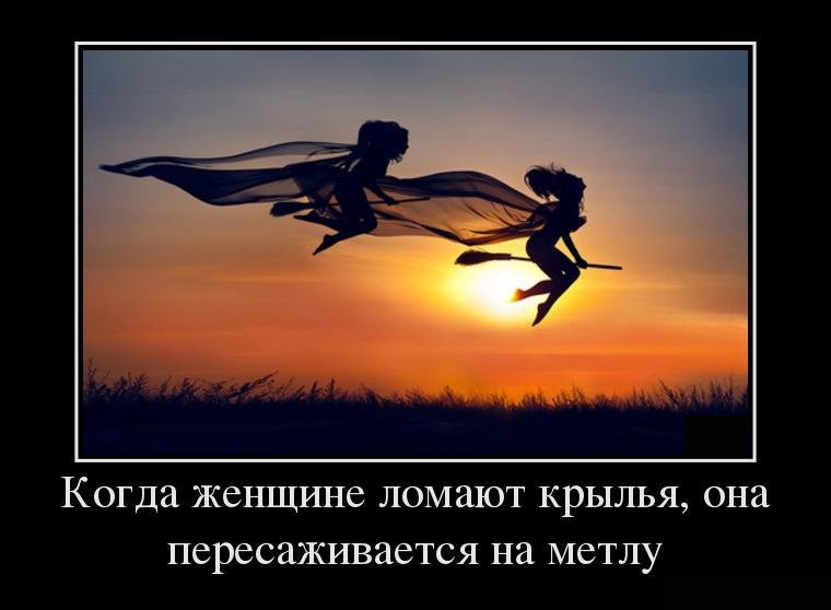 10   Крылья и метла