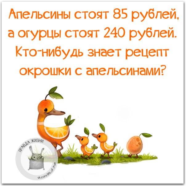 01   Окрошка с апельсинами