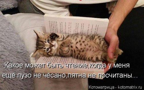 Какое может быть чтение