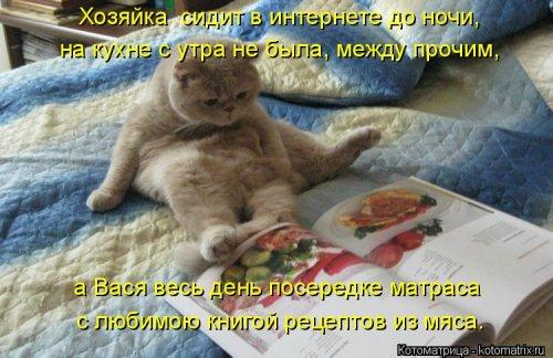 С любимой книгой рецептов из мяса