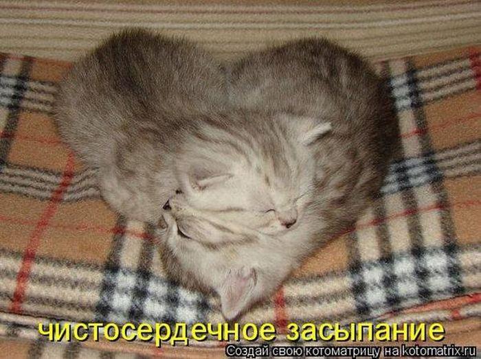 Чистосердечное засыпание