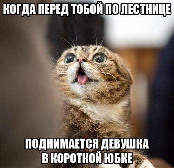 Когда перед тобой
